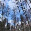 8.2.2015 Irenental 3D